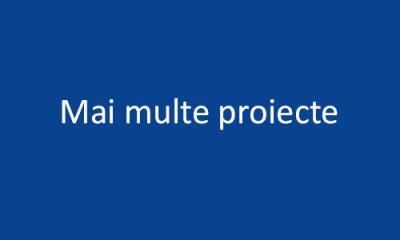 Mai multe proiecte...